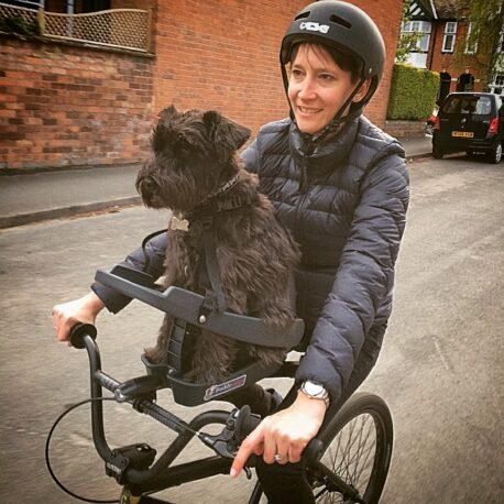 silla- de- bici -para- perro -031