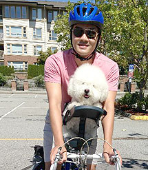 silla- de- bici -para- perro – caniche