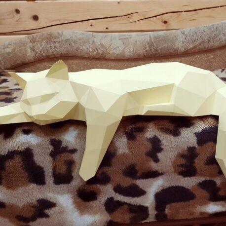 Gato tumbado01