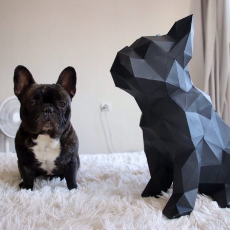 bulldog sentado05
