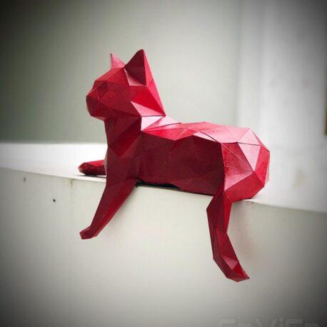 gato tumbadi07