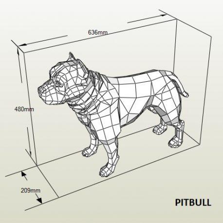PITBULL01