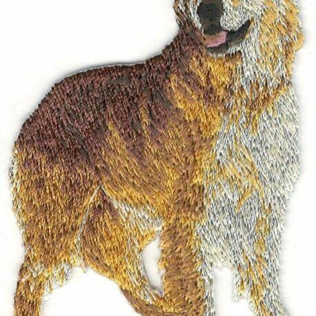 Parche bordado Golden Retriever 05
