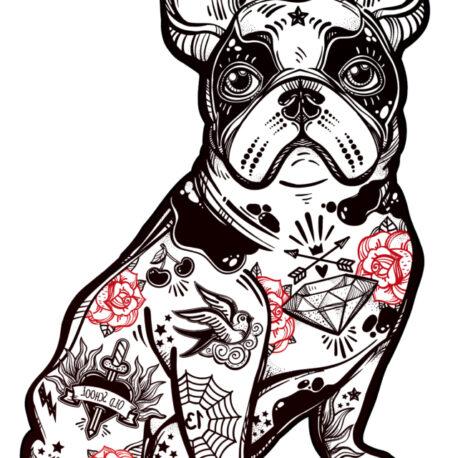 modelo bulldog f camiseta