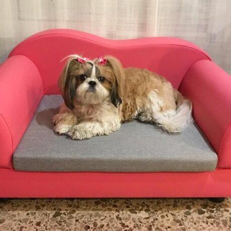 sofa miami02